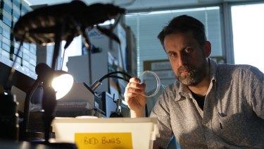 Westmead Hospital entomologist, Stephen Doggett.