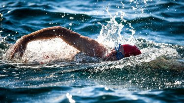 "Swimmer Grant Siedle swims the ""Rip"" from Point Lonsdale to Point Nepean on Monday."