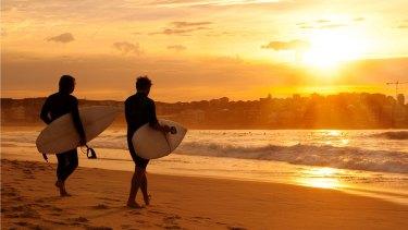 Dress circle: Bondi surfers take on the waves.