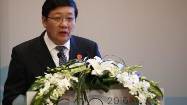 Chinese finance minister Lou Jiwei has called on the G20 to play a leading role in supporting a new international tax system.
