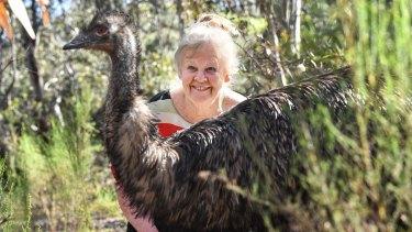 Insatiable curiosity: Professor Graves with an emu at La Trobe University wildlife sanctuary.