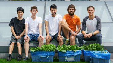 Canberra startup entrepreneurs Ken Loh, Luke Worth, Arash Joobandi, Tom Watkins and James Deamer are in Shenzhen developing their concept for an automated gardening system.
