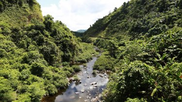 Vietnam's Khe Nuoc Trong forest has retained just 30 per cent of its original natural vegetation.