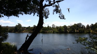 Boys swing from a rope swing on the Nepean River as the mercury hit 42 in Penrith on Saturday.