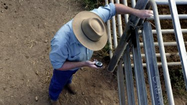 Backpackers worked almost three months without a day off on a farm west of Gympie.