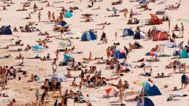 A crowded Freshwater beach filled with umbrellas and shades.