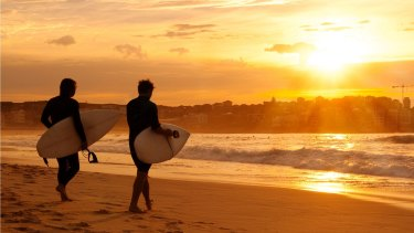 Summer extremes: Surfers at Bondi Beach.