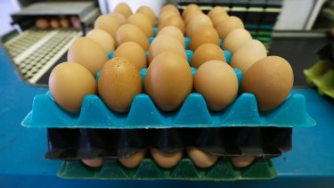 Countries around the world are trying to phase-out caged eggs.