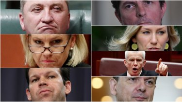 The High Court is considering the eligibility of seven MPs: (anti-clockwise from top left) Barnaby Joyce, Fiona Nash, Matt Canavan, Nick Xenophon, Malcolm Roberts, Larissa Waters and Scott Ludlam.