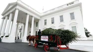 First lady Michelle Obama received the official White House Christmas Tree on November 25.