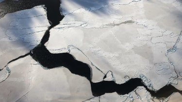 Sea ice off West Antarctica, as viewed from NASA Operation IceBridge.