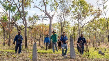 Olkola elders and land managers brothers Glen Kulka (left) and Hamish Kulka (right) and Allana Brown, Ecologist with Bush Heritage Australia searching for possible nests.