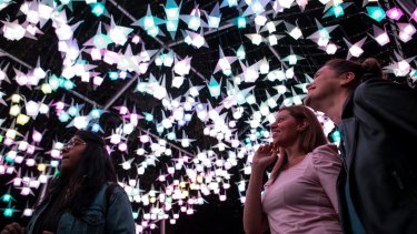 Visitor numbers and tweets influence the brilliance of the 1000 Cranes installation.