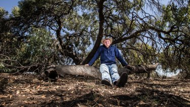 Gunbower farmer John Toll is one of many farmers who appreciates the benefit of trees. He has planted 35,000 to 40,000 trees on his sheep property over past 20 years.