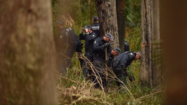 Police search for the remains of Matthew Leveson in bushland in the Royal National Park at Waterfall on Thursday.