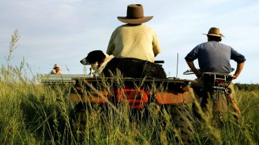 In a case this month, the Administrative Appeals Tribunal denied a farm worker almost $30,000 in expenses for meals, groceries and accommodation over two financial years.