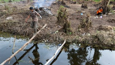 Villagers in Pelalawan use small fires to clear land for a vegetable garden.