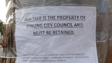 A local's attempt to win a last-minute reprieve for the tree.