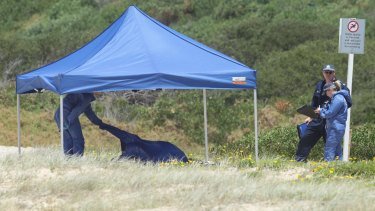 A crime scene has been established on the southern end of Maroubra Beach.