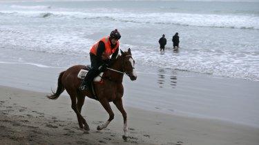 Training on Warrnambool's Lady Bay Beach.