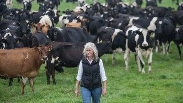 Dairy farmer Kate Lamb described Murray Goulburn's milk price cut as ''a kick in the guts''.