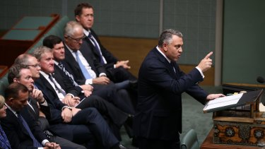 Treasurer Joe Hockey hands down the Budget in the House of Representatives on Tuesday night.