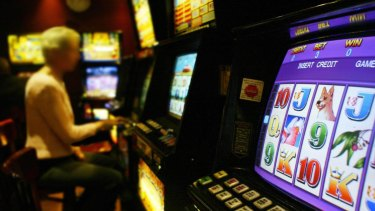 Labor has backed loyalty cards for pokies machine gamblers – a complete backflip from its position in opposition.