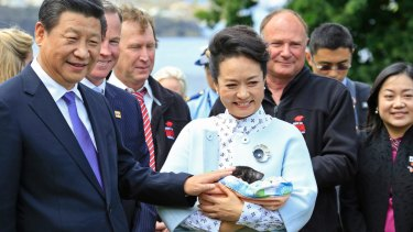 Chinese President Xi Jinping and Madame Peng Liyuan with a Tasmanian devil during their 2014 visit to Hobart.