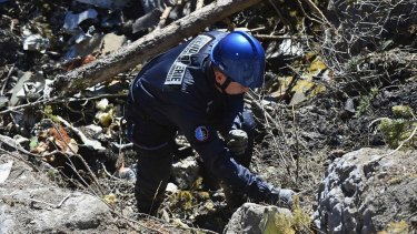Body parts identified ... A French gendarme makes his way through debris from wreckage on the mountainside at the crash site of an Airbus A320, near Seyne-les-Alpes.