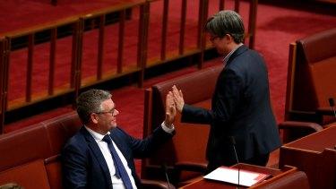 Labor senators Murray Watt and Penny Wong after the vote.