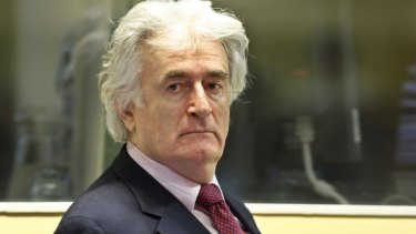 Bosnian Serb leader Radovan Karadzic at the Hague in 2009.