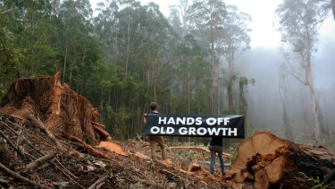 Anti-logging activists at Granite Mountain in East Gippsland.