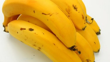 Under threat: the Cavendish banana.
