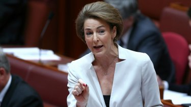 Michaelia Cash says the Abbott government accepts that Australia has a domestic violence epidemic.