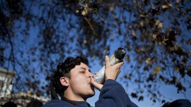 A man smokes from a giant marijuana joint during a demonstration in favour of legalisation in Santiago, Chile.