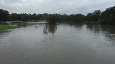 Overwhelming the system: Flooding in Riverview Crescent, Dulwich Hill in April 2105.