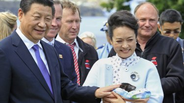 Meet and greet: President Xi Jinping and his wife, Peng Liyuan, have a close encounter with a Tasmanian Devil during their visit to Government House in Hobart.