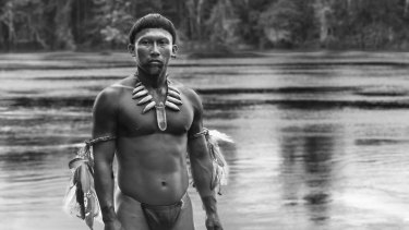 <i>Embrace of the Serpent</I> is a visually stunning story from the Colombian Amazon.