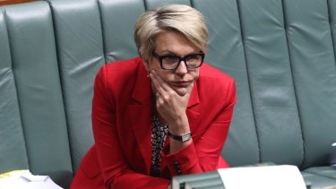 Labor's foreign affairs spokeswoman Tanya Plibersek, pictured in Parliament on Thursday, will announce a $30 million boost to local aid organisations.
