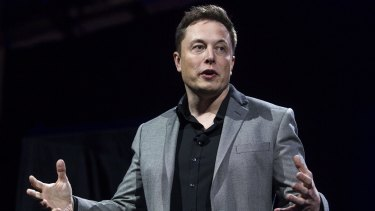 Tesla Motors chairman and chief executive Elon Musk: Full of promises but not enough action.