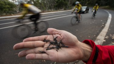 The tacks being dropped on the Yarra Boulevard in Kew.