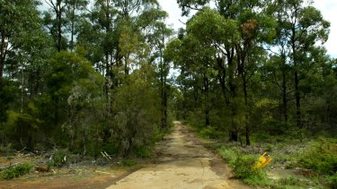 Plans for a bushland track to be used by emergency services vehicles has become a point of contention for Brisbane City Council, Premier Campbell Newman and Ashgrove candidate Kate Jones.