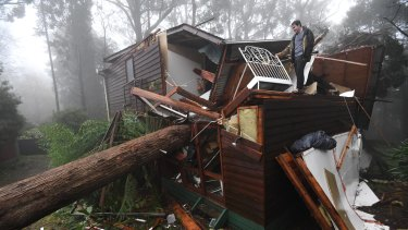 James Pickford was very lucky to escape after a large tree smashed through his Olinda bedroom.