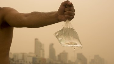 An Israeli man holds up the fish he caught on the Mediterranean Sea beach front, covered with a blanket of yellow dust, in Tel Aviv, Israel, on Tuesday.