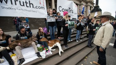 Animal liberationists awaited the arrival of the farmers on the steps of Parliament House on Wednesday.
