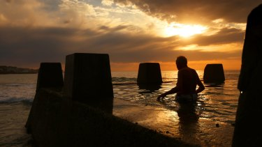 A man enters the water at the baths at Coogee Beach earlier this week.