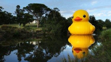 Florentijn Hofman's five-storey-high inflatable rubber duck on the Parramatta River during the 2014 Sydney Festival.