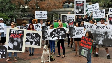 The Stop the Florida Bear Hunt campaign stages a protest in downtown Jacksonville.