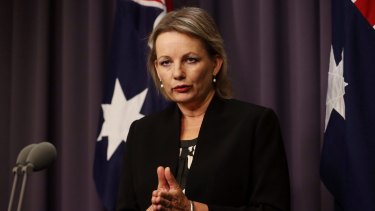 """The Abbott government is committed to working with the mental health sector to deliver effective, efficient and high-quality services"": Sussan Ley."