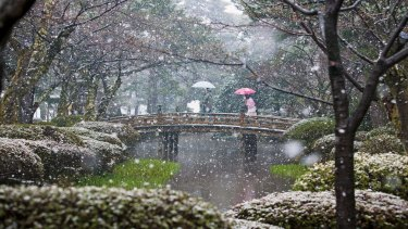 Claire Takacs' photograph of Japan's Kenrokuen garden won the inaugural International Garden Photographer of the Year competition in 2008.